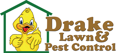 Pest Control Romford